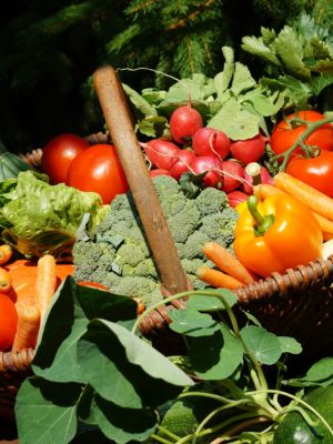 Bio - Gemüsesamen